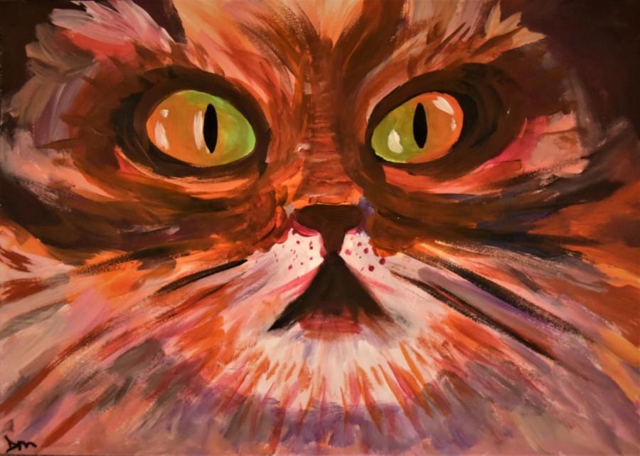Cat's-Eyes