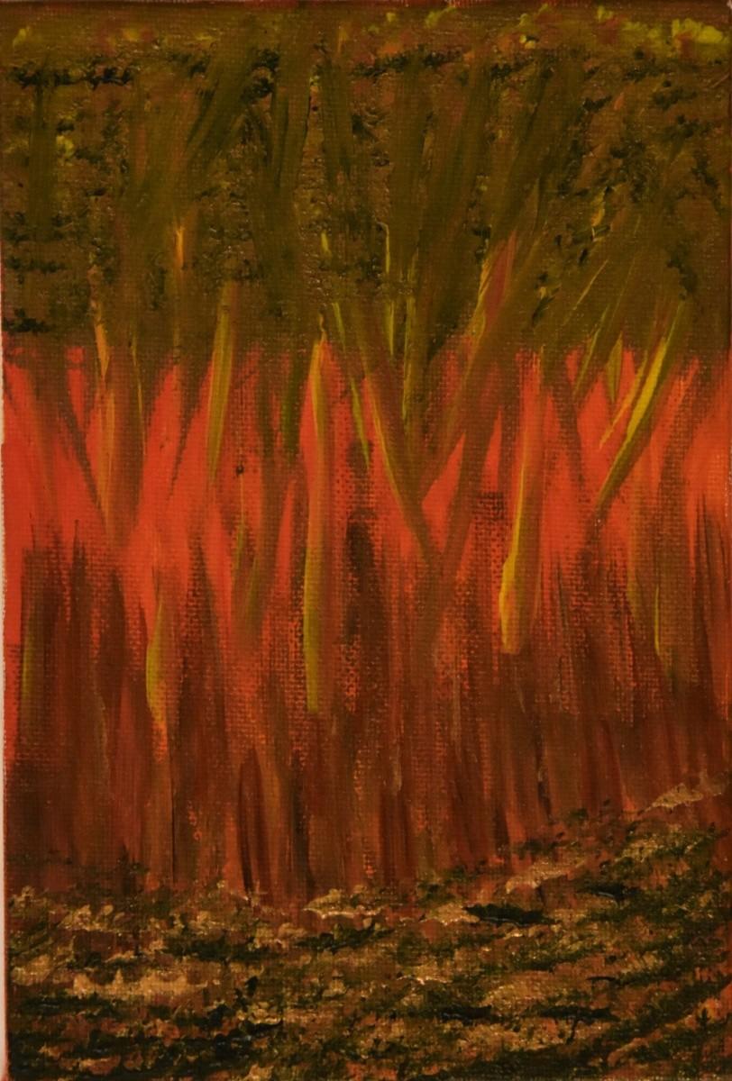 Flame-Trees