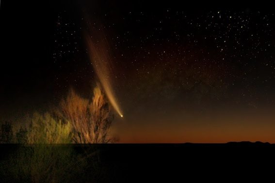 Comet-McNaught-Photograph
